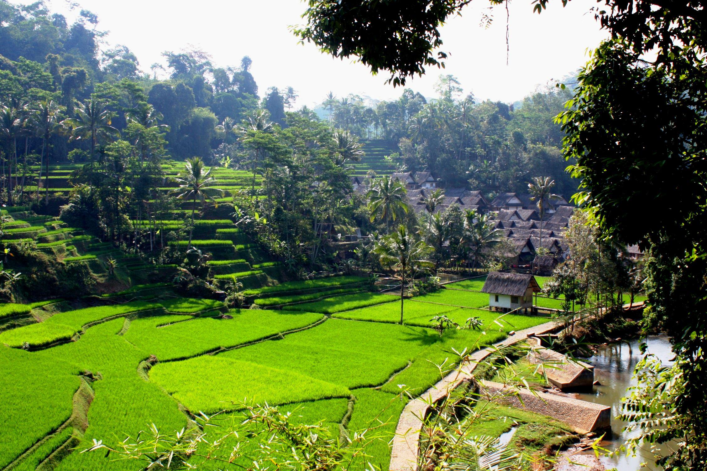 Desa Diklaim Tempat Ideal Untuk Masa Tua
